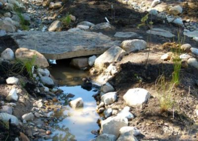 Wetlands_bridge