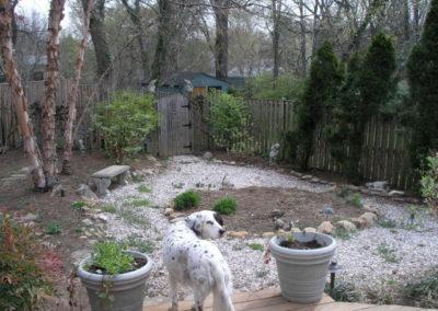 cc_before_backyard